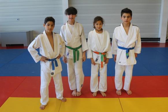 club de judo montpellier